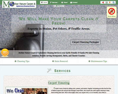 Mother Nature Carpet & Upholstery Cleaning Service